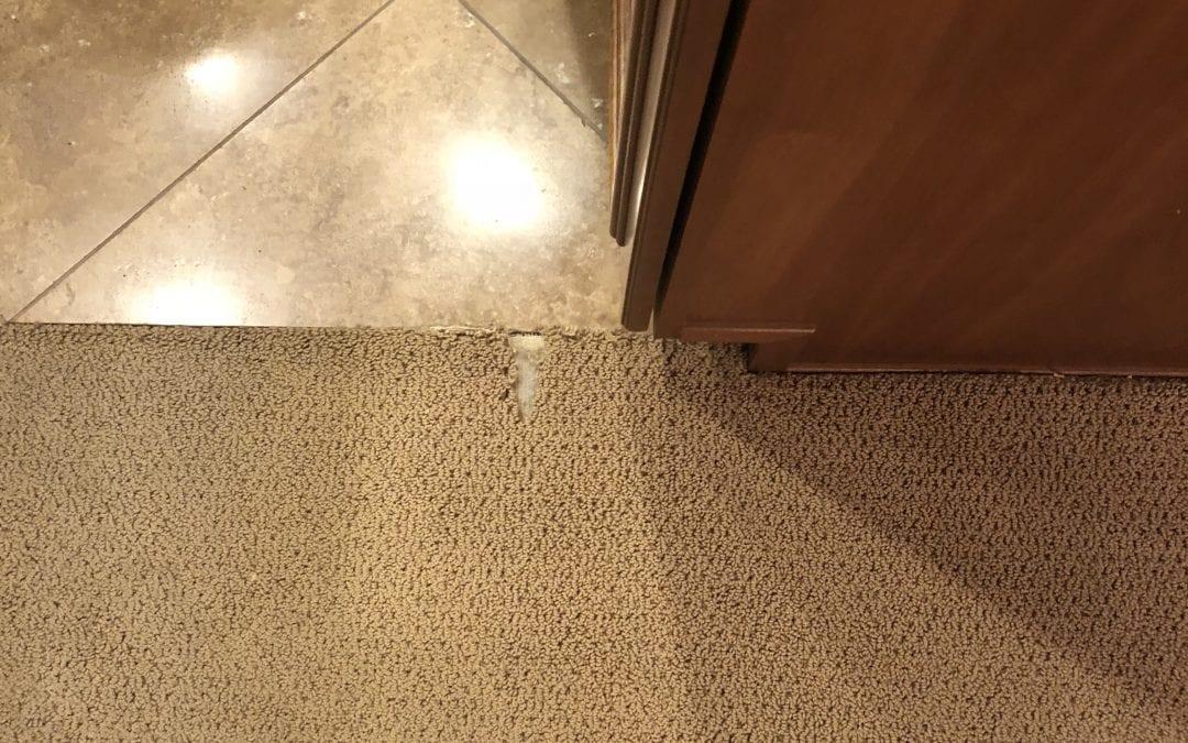 Phoenix, AZ: Carpet Repair